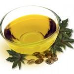 ricin-huile-vegetale