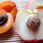 aliments-mieux-bronzer